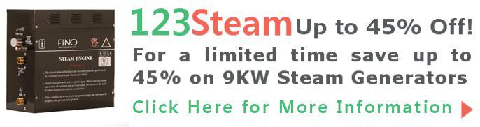 Fino Steam Generator Sale