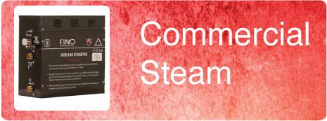 Commercial Steam Generators